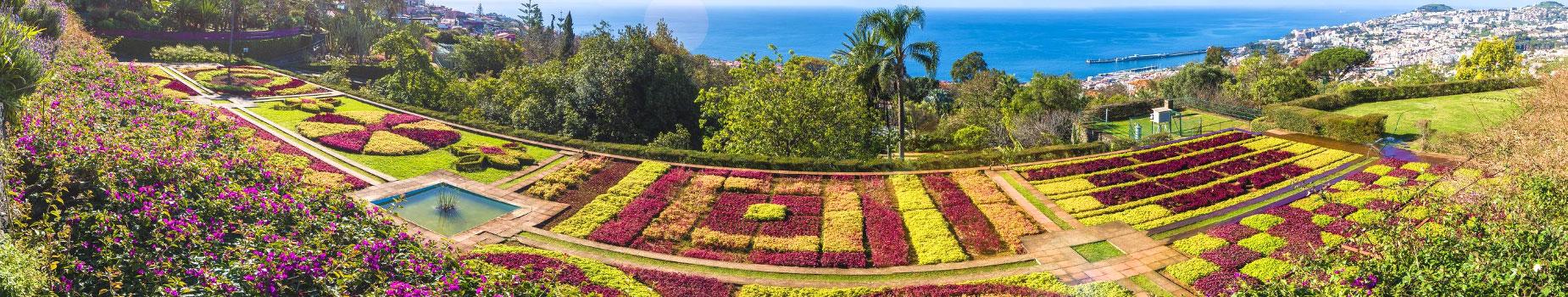 Vlieg busreis Madeira