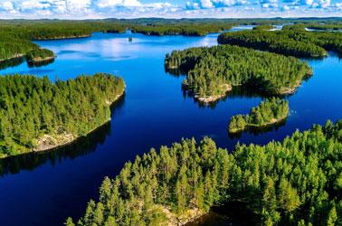natuur met meren en wouden in finland
