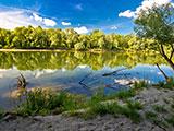 rivier natuur hongarije
